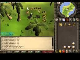 RuneScape Two Was Great For Me Personally